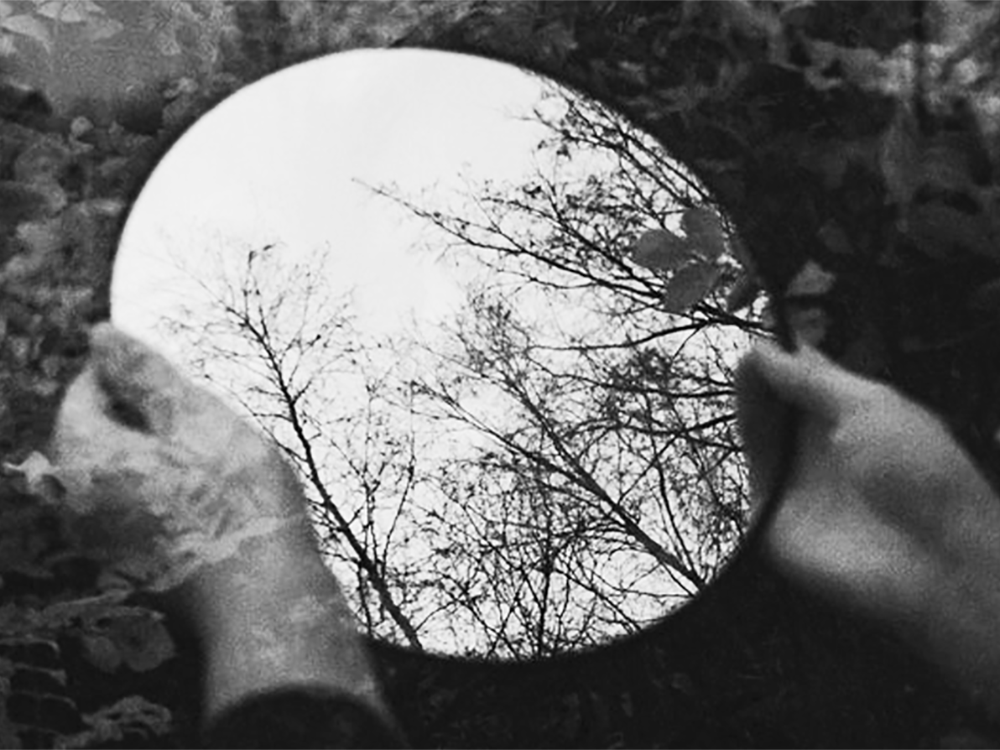 Hands hold mirror reflecting trees reflective practice for coaches